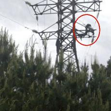 Смертельні ігри заради селфі: на Волині дитину  вбило струмом