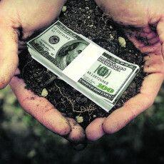 «Раніше вони вкладали гроші в«царські села» під Луцьком, атепер кошти зофшорів виймуть іземлю скуплять…» (Відео)