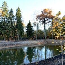 На Волині лісівники створили сучасні зони відпочинку нового формату (Фото)