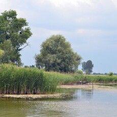 Прокуратура Волині виявила незаконну забудову у заповіднику на Турійщині