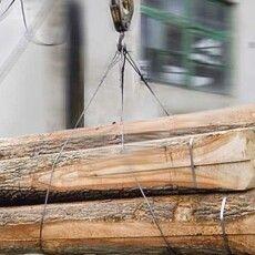 ДоЦумані везуть ліс–кругляк ізЄвропи