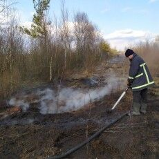 Біля Яревища рятувальники ліквідували пожежу на торфовищі