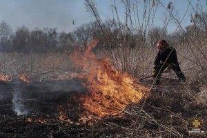 Намагаючись загасити суху траву, загинула 80-річна жінка