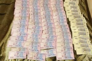 На Волині вилучили незаконну деревину вартістю близько 800 тисяч гривень (Фото)