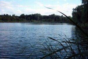На Волині горе-бізнесмен самовільно «привласнив» ставок площею майже 200 га