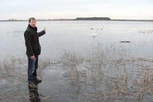 Біло від лебедів на озері Білому