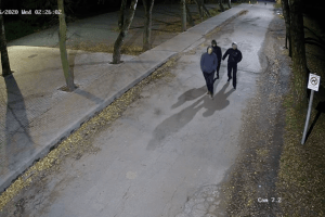 Камери у луцькому парку зафіксували хлопців, які потрощили майно. Лучан просять пізнати їх (Відео)