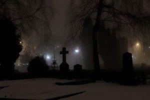 Волинські поліцейські упіймали злодія, який украв огорожу на кладовищі