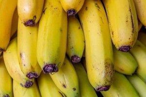 Лісівники зібрали перший врожай бананів