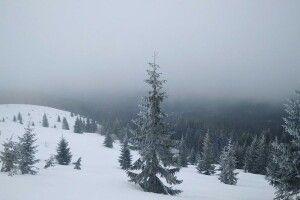 У Карпатах навалило понад 1 метр снігу