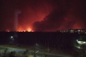 На Луганщині вирують страхітливі лісові пожежі (Відео)
