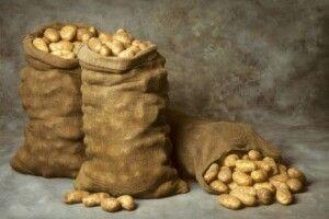 У Локачах просять здати кров і картоплю