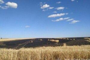 Діти спалили поле пшениці