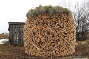 У Нацпарку «Прип'ять-Стохід» за в'язку дров правитимуть Франка з Хмельницьким