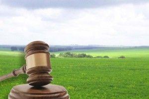 Недобросовісний орендар із Ковельщини повернув громаді землю вартістю 15 мільйонів гривень