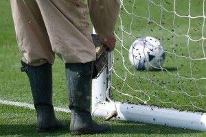 Перед початком футбольного матчу стадіон атакували бджоли