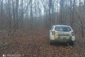 У Володимир-Волинському районі «на гарячому» спіймали чоловіка, що самовільно рубав ліс