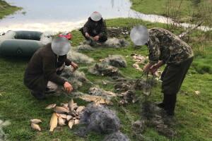 На Волині засудили браконьєрів, які під час нересту ловили сітками рибу в Нацпарку