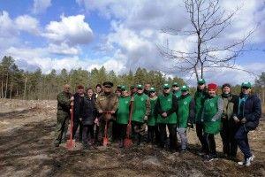 На Камінь-Каширщині посадили два гектари нового лісу