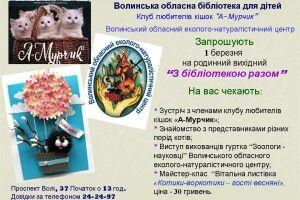 1 березня владу в Луцьку візьмуть у свої лапки коти