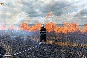 Аграрії через пожежу мало не залишилися без хліба