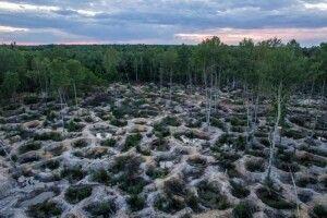 Любешівські селяни нераді видобутку бурштину біля їхніх сіл
