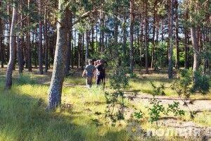 Шукали селяни і поліція: зниклого напередодні волинянина знайшли під ранок в лісі (Фото)