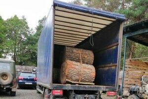 На Ківерцівщині затримали вантажівку з краденим дубом