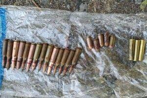 У волинянина поліція вилучила 22 патрони