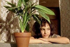 Чого не вистачає вашому вазону