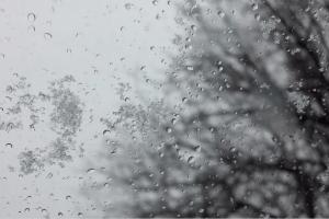 Погода на понеділок, 30 листопада: осінь втекла передчасно
