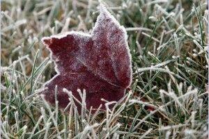 Погода на вівторок, 24 листопада: з цього дня, зазвичай, починається зимова холоднеча