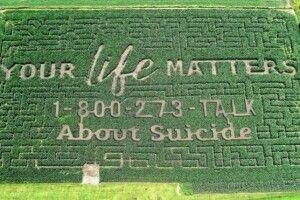 У США фермер рятує людей від самогубства кукурудзяним полем