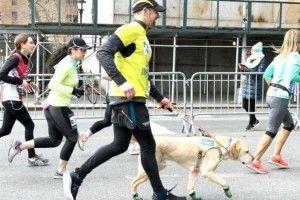 Нью-Йоркський напівмарафон пробіг незрячий чоловік – поруч були чотирилапі розумахи-поводирі