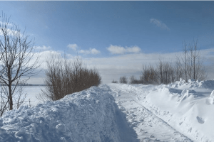 Знайшли неподалік села: замерзла 41-річна волинянка, яка вночі поверталася додому зі сусіднього села
