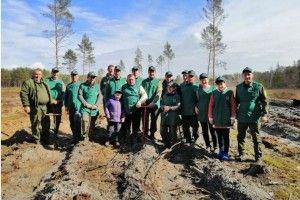 Камінь-Каширці дбають про майбутнє лісу