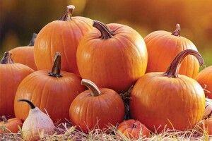 Рецепти осінніх смаколиків: хто їсть кашу гарбузову— буде сильним іздоровим!