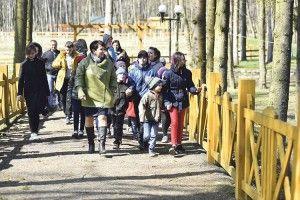 Політично-лісові реалії Ківерцівщини