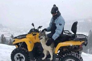 У горах на Львівщині собака врятував туриста