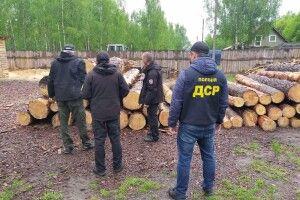 Показали зброю та незаконну деревину, яку вилучили у лісокрадів на Волині (Фото)