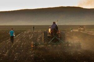 Ринок землі: наВолині вже продали 24гектари ріллі