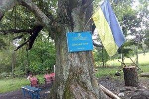У Березній Волі клуб облаштували під деревом