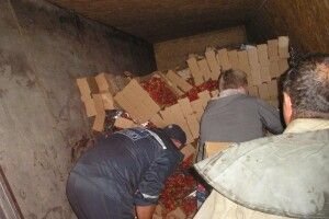 На Запоріжжі перевернулася вантажівка з п'ятьма тоннами полуниці (фото)