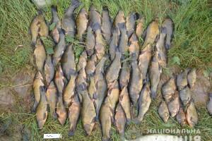 На озері під Голобами злапали двох заїжджих браконьєрів, які встигли натягати чверть центнера линків (фото)