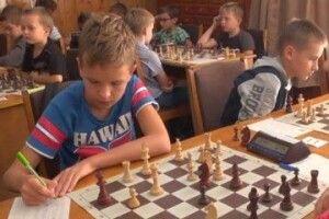 У Ковелі — шахи в пошані