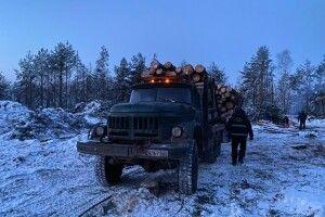 На Ковельщині арештували вантажівку із деревиною(Фото)