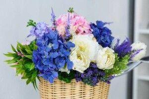 А якщо наснилася синя троянда…