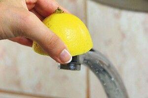 Лимон— помічник господині