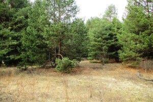 На Волині в господарства забрали два гектари землі, яку використовували незаконно
