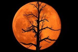 Місячний календар наберезень 2020